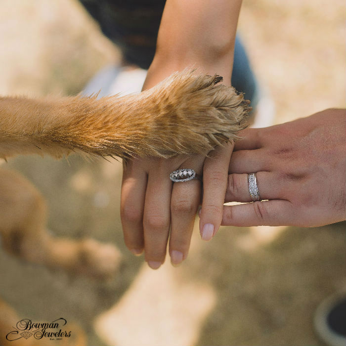 pet-spouses-flaunt-engagement-rings-bowman-jewelers
